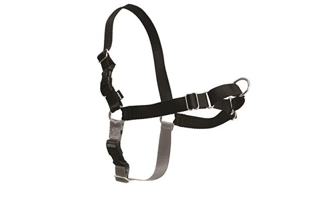 美國PetSafe貝適安輕鬆走防暴衝胸背帶 M / L,黑色/銀色