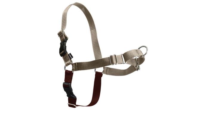 美國PetSafe貝適安輕鬆走防暴衝胸背帶 M / L,小鹿/棕色