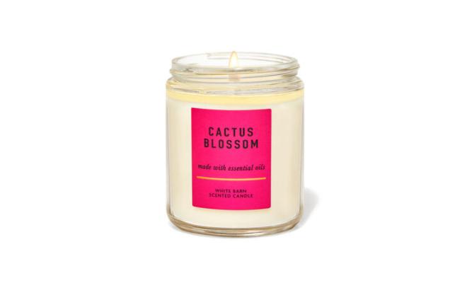 Bath & Body Works單芯 CACTUS BLOSSOM - 仙人掌,椰奶,香草,汽水檸檬