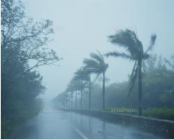 颱風(天鴿)期間,自提點,自取車及派件安排