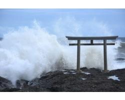 大阪關西國際機場水浸損毀,大阪倉庫暫停出貨