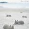 貓型沙灘玩具